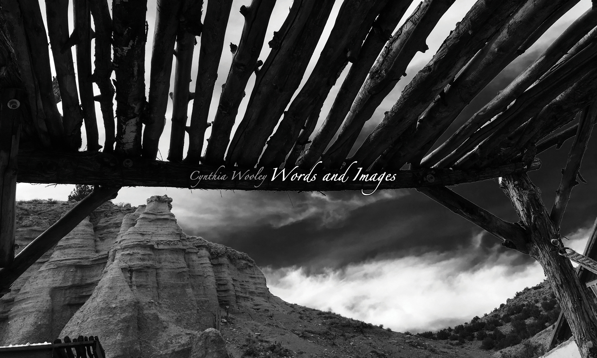 Cynthia Wooley - Words and Images
